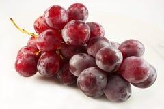 виноградины пука красные Стоковое фото RF