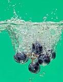 виноградины пука плавая брызгают воду Стоковая Фотография