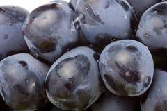 Виноградины черным по белому Стоковое Изображение RF