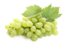 виноградины Стоковые Фото