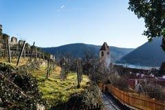Виноградники в долине Vachau стоковое фото rf