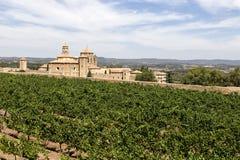 Виноградники в монастыре Santa Maria de Poblet, Каталонии, Испании стоковые фото