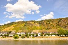 Виноградники Германии стоковые фотографии rf