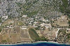 виноградники острова горного склона brac стоковое фото