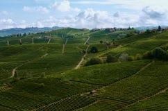Виноградники района вина Barolo Langhe, Италии стоковая фотография rf