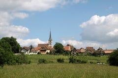 виноградники села стоковое изображение