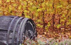 виноградник бочонка осени Стоковые Фото