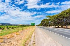 Виноградник вдоль дороги сельской местности Стоковая Фотография RF