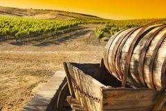 Виноградник виноградины с старой фурой экипажа бочонка Стоковое фото RF