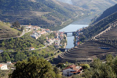 виноградник долины области Португалии почты douro Стоковые Фотографии RF