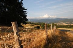 Виноградник на холмах Chianti в Тоскане во время захода солнца лета Стоковая Фотография