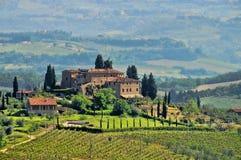 виноградник Тосканы Стоковые Изображения RF