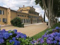 виноградник Франции Стоковое Изображение
