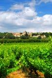 виноградник франчуза сельской местности Стоковое Изображение RF