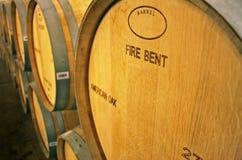 виноградник Чили Стоковые Фото