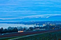 виноградник швейцарца рассвета Стоковые Изображения RF
