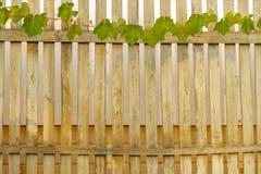 Виноградное вино оборачивает вверх верхнюю часть деревянной загородки стоковое фото rf