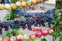 Виноградина и яблоки Стоковые Изображения