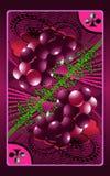 виноградина карточки Стоковые Фото