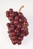 Виноградина на белой предпосылке, красная виноградина стоковые фото
