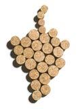 виноградина пробочки Стоковая Фотография
