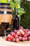 Виноградины вина Стоковые Изображения RF
