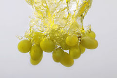 Виноградины в выплеске воды на белой предпосылке Стоковое Изображение