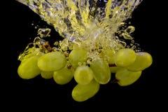 Виноградины в воде брызгают изолировано на черной предпосылке Стоковые Фото