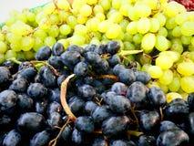 Виноградины в сезоне Стоковое Изображение