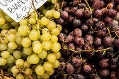 Виноградины в Флоренсе Стоковые Изображения RF