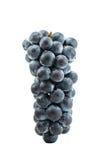 Виноградины в Японии Стоковое фото RF