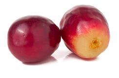2 виноградины закрывают вверх На белизне Стоковые Изображения RF