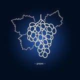 Виноградины изображения в контурах иллюстрация вектора
