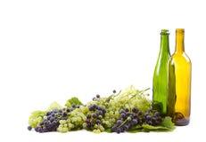 Виноградины и бутылки на белизне стоковые изображения
