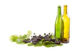 Виноградины и бутылки на белизне стоковое изображение rf