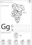 Виноградины и подарок шаржа Рабочее лист алфавита следуя: Запись ОТ НАЧАЛА ДО КОНЦА иллюстрация штока