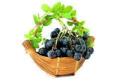Виноградины корзины Стоковое фото RF