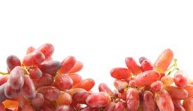 виноградины клиппирования пука предпосылки включили изолированную белизну путя красную Стоковые Фото