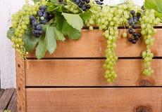 Виноградины на деревянной клети стоковые изображения