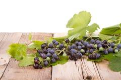 Виноградины на деревянной планке стоковая фотография rf