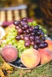 Виноградины, персики, сливы Стоковая Фотография RF