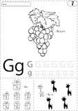 Виноградины, подарок и жираф шаржа Рабочее лист алфавита следуя: wr иллюстрация штока
