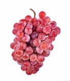 виноградины предпосылки изолировали красную белизну Стоковые Фото