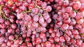 виноградины предпосылки красные Стоковое Изображение