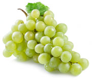 виноградины пука белые Стоковые Изображения