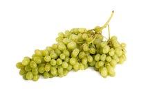 виноградины пука большие Стоковая Фотография RF