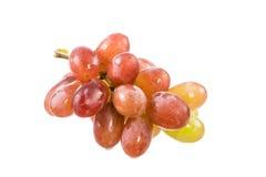 виноградины пука красные Стоковая Фотография RF