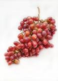 виноградины пука красные Стоковое Фото