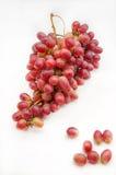 виноградины пука красные Стоковые Фотографии RF