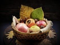 виноградины плодоовощей корзины осени яблок Стоковые Фотографии RF